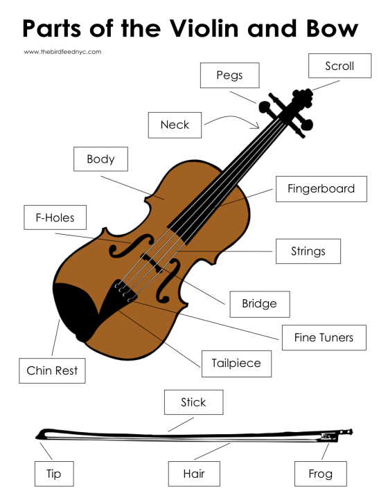 Parts of the Violin and Bow